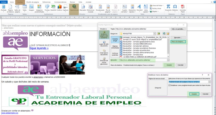 LINKAR email a CV